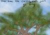 Tree Carvings